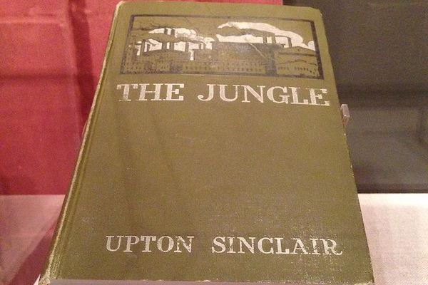 the nature of the industrial world as portrayed in the jungle by upton sinclair